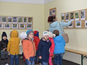 """Vizitatori, la Muzeul Brăilei """"Carol I"""" – Secţia Ştiinţele Naturii. Grup de copii de la Gradinita nr. 18"""