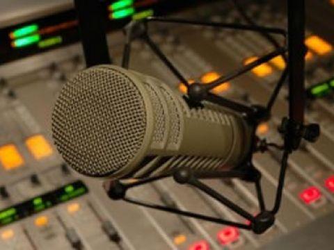 """""""ROMANIA ÎN LUME"""" – RADIO ROMANIA ACTUALITĂŢI. Interviu cu scriitorul Mircea Săndulescu (New York, SUA) şi directorul publicaţiei """"Observatorul"""", Dumitru Puiu Popescu (Toronto, Canada). Este vorba şi despre NICĂPETRE şi CENTRUL CULTURAL NICĂPETRE BRĂILA. Realizator: Puşa Roth (18 decembrie 2010) (audio)"""